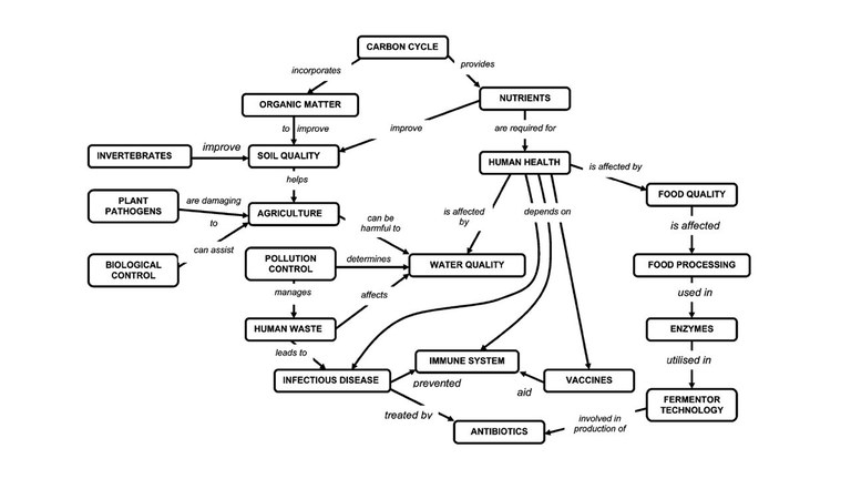 Microbiology Concept Map.Concept Mapping Your Course Education
